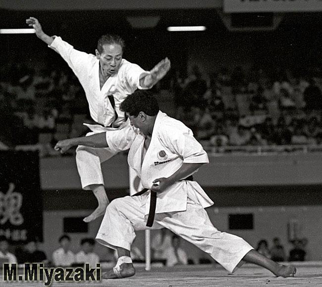 Japan Karate Shotorenmei