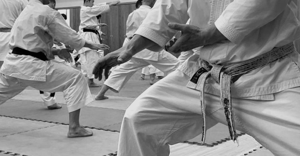 meaning of shotokan karate belt colors